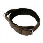 Leather Agitation Collar with Handle